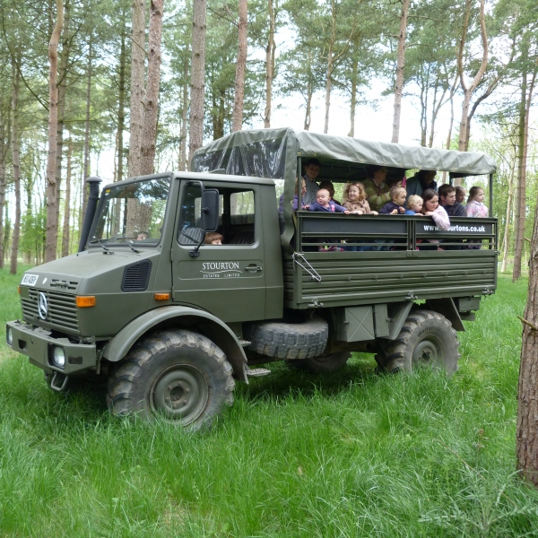 unimog, deer safari, woods, arboretum, christmas, treat, red deer, safari