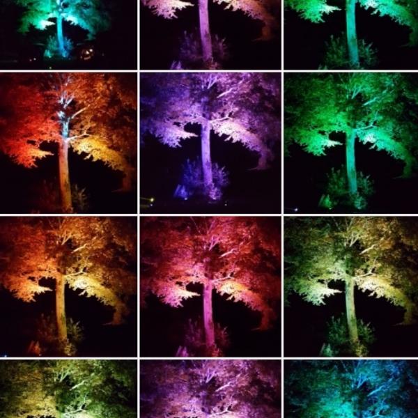 Lightshow images